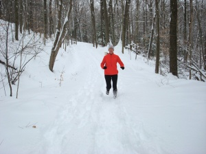 Deer Lick trail in the snow, Brecksville Reservation